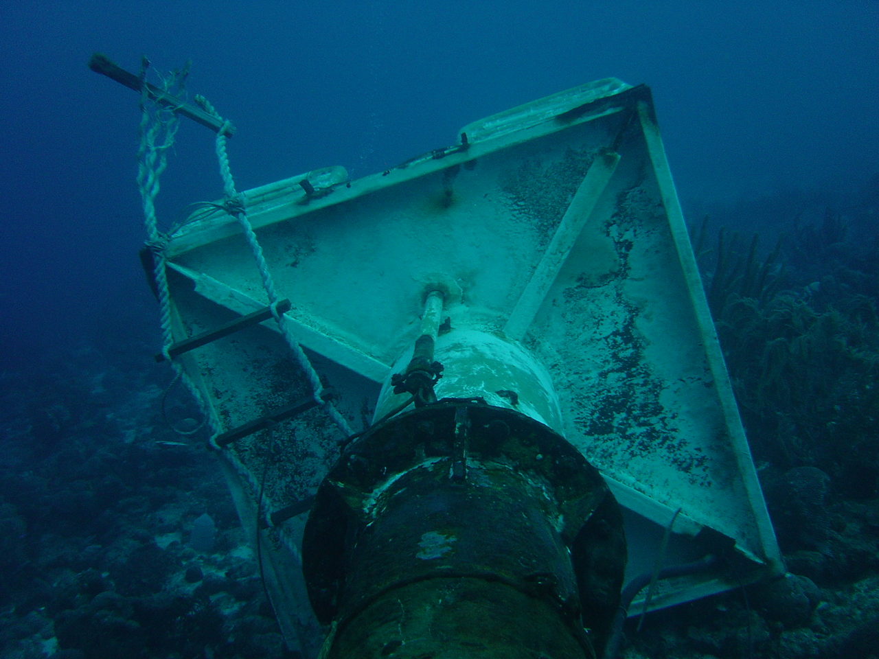 Curacao Industrial Diving N V Services